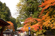 紅葉に染まる「世界遺産 日光の社寺」を歩く