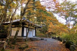 紅葉の憾満ヶ淵と国道沿いのひっそりとした神社を巡る