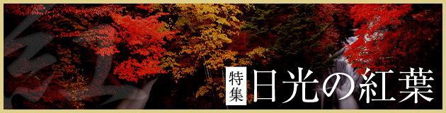 特集 日光の紅葉