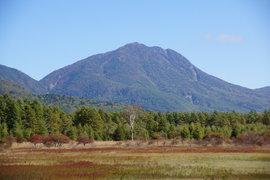 草紅葉の小田代原と戦場ヶ原「ラムサール条約湿地」ハイキング