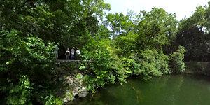 湯ノ湖 兎島北付近(ボートの上から)