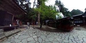 日光二荒山神社 本社 神苑