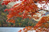 奥日光の奥の方、湯ノ湖・湯滝の紅葉が見頃です!