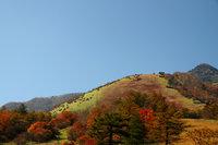 霧降高原 キスゲ平園地、六方沢橋の紅葉が見頃です!