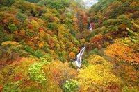 奥日光湯元温泉今週のおすすめ観光スポット