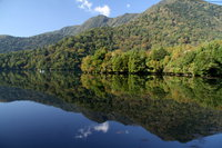 奥日光湯元温泉、湯ノ湖、竜頭ノ滝では木々が少しづつ色づいてきました。