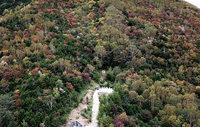 【奥日光】紅葉の山王帽子山の空撮動画をアップしました。
