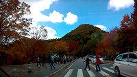 紅葉が見頃になった奥日光の車載動画をアップしました。