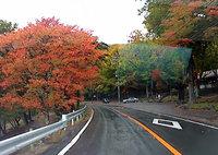 雨ですが、紅葉が見頃になった奥日光の車載動画をアップしました。