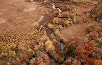 紅葉が見頃になった奥日光の空撮動画をアップしました。