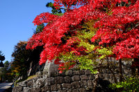 世界遺産日光の社寺の紅葉は今が見頃です!