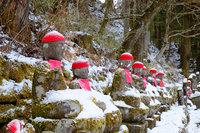 日光市内は昨晩、雪が降りました。
