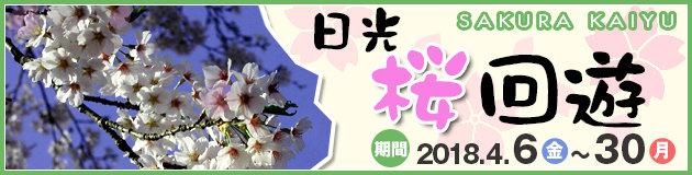 桜巡りイベント「日光桜回遊」