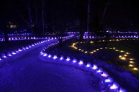 2月2日(土)から奥日光湯元温泉で「奥日光湯元温泉雪まつり」が開催されます!