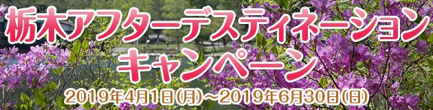 栃木アフターデスティネーションキャンペーン