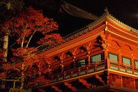世界遺産 日光の社寺で「ライトアップ日光2019」が開催されています!