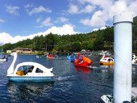 「中禅寺湖スワンボートレース」の写真を追加しました。