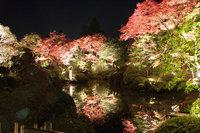 【10月25日〜11月15日開催】逍遥園ライトアップ